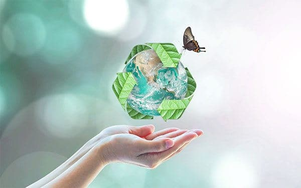 Eco friendly symbol and a butterfly hovering over open hands .